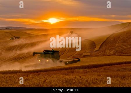 A John Deere combine harvests wheat at sunset on the rolling hills of the Palouse Region / near Pullman, Washington, - Stock Photo