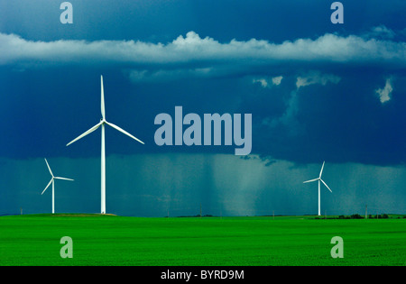 Wind turbines operate in an early growth wheat field with dark storm clouds above and a rain storm in the background - Stock Photo