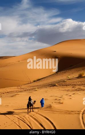 Tuareg Berber man leading a tourist on dromedary camel through the Erg Chebbi desert in Morocco North Africa - Stock Photo