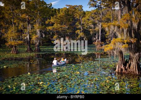 People riding a canoe, Bald cypress trees, Cypress Swamp, Caddo Lake, Texas and Louisiana, USA - Stock Photo