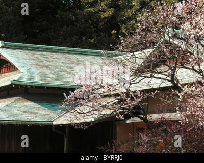 Suwano-chaya Tea House in the Imperial palace east gardens, Tokyo, Japan. - Stock Photo