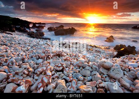 Sunset on beach with coral. Maui, Hawaii. - Stock Photo