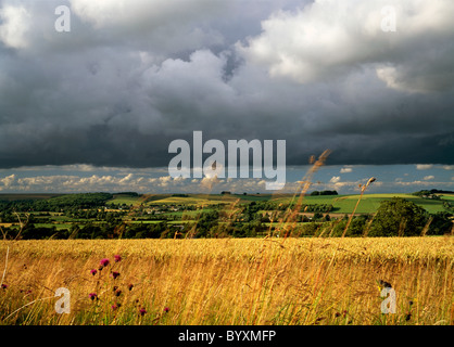 A view of the Wylye Valley in Wiltshire, England, taken from the Wessex Ridgeway near the village of Corton. - Stock Photo