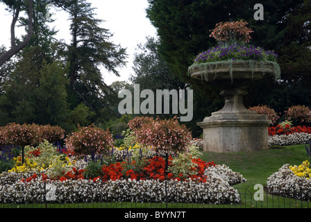 Floral display, summer flower beds in Royal Victoria Park Bath Spa Somerset UK - Stock Photo