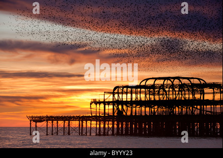 The ruins of the West Pier, Brighton. - Stock Photo