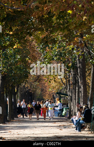 Pedestrians walk on tree shaded sidewalks along the Avenue des Champs-Elysees in Paris, France. - Stock Photo