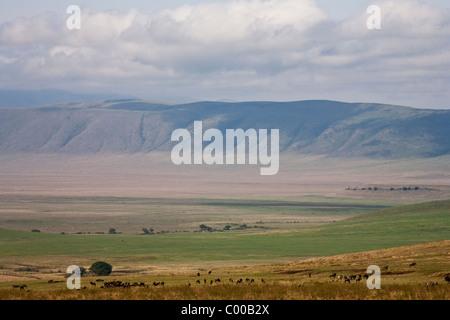 Great Rift Valley Tanzania, Africa - Stock Photo