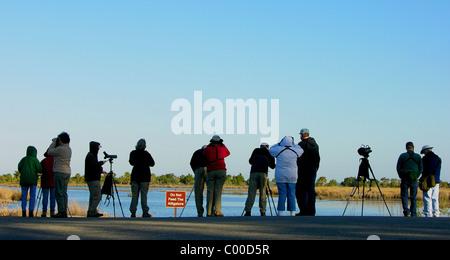 Bird watchers, early morning, St. Marks National Wildlife Refuge, Florida - Stock Photo