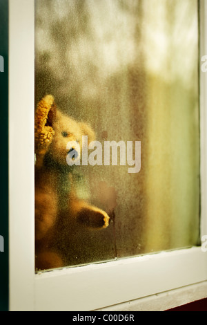 Teddy bear looks out of window - Stock Photo