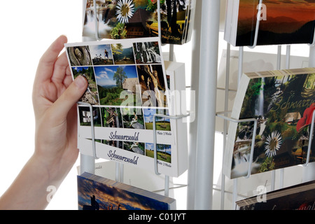 Getting a postcard from a rack - Stock Photo