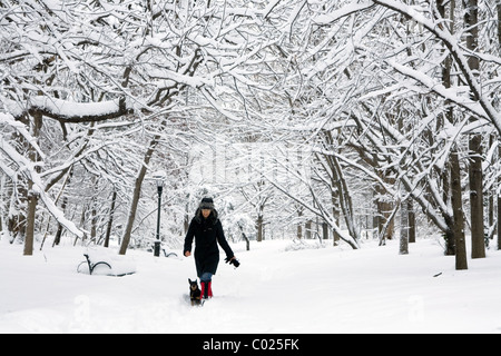 Woman and her dog alone after a snowstorm in Prospect Park, Brooklyn, NY. - Stock Photo