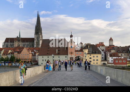 View from Steinerne Bruecke bridge, looking towards the historic district with Regensburg Cathedral, Salzstadel - Stock Photo