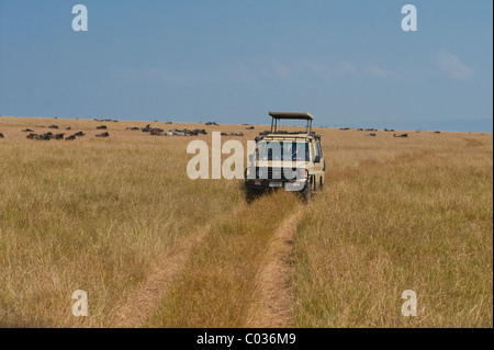 Off-road vehicle in the Serengeti, safari, game drive, Tanzania, Africa - Stock Photo