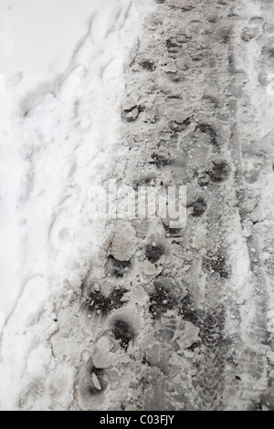 snow covered sidewalk - Stock Photo