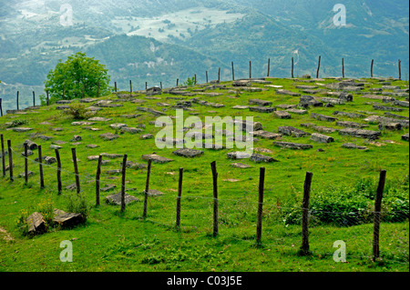 Jewish cemetery, Leilaschi, Georgia, Western Asia - Stock Photo