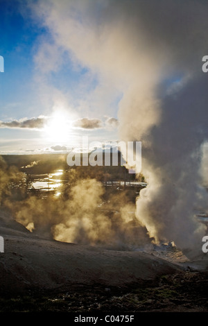 Black Growler Geyser, Porcelain Basin, Norris geothermal area, Yellowstone, Wyoming, USA - Stock Photo