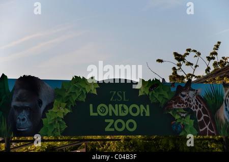 London Zoo sign, close-up, Zoological Gardens entrance, Regents Park, England, UK, Europe, EU - Stock Photo
