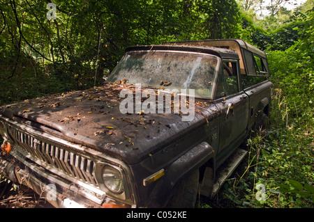 Abandoned vintage pick up truck kamieskroon namaqualand for Unclaimed motor vehicle ohio