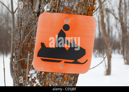 A snowmobile sign nailed to a tree in Northern Minnesota, USA. - Stock Photo