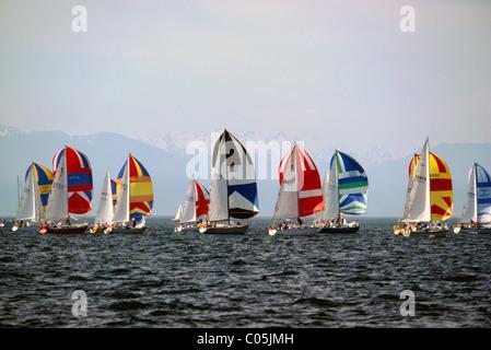 Sailing Boats sail in Swiftsure International Yacht Race Regatta near Victoria, BC, Vancouver Island, British Columbia, - Stock Photo