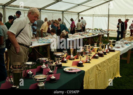 Village horticultural, flower and produce show, Brailes, Warwickshire, England - Stock Photo