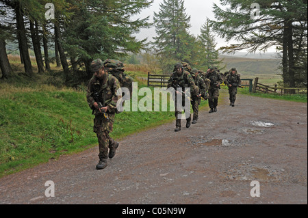 Exercise CAMBRIAN PATROL is the premier patrolling event of the British Army which is held in Wales and hosted by - Stock Photo