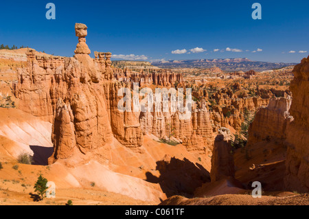 Thor's hammer and sandstone hoodoo's in Bryce canyon national park Utah United States of America USA - Stock Photo