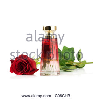 Red rose and Perfume bottle - Stock Photo