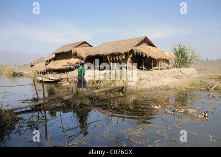 Intha homestead on a canal near Inle Lake, Nyaung Shwe, Shan State, Myanmar, Burma, Southeast Asia - Stock Photo