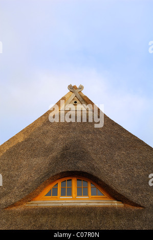 Gable of a thatched roof of a farmhouse with a dormer window and two carved horse heads on the gables, Othenstorf - Stock Photo