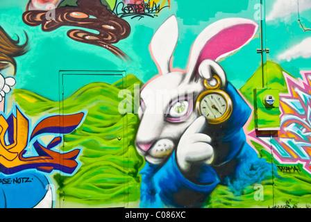 Alice in Wonderland graffiti wall art mural detail in Wynwood Art