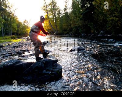 Woman fly fishing for Rainbow trout on the Russian River, Kenai Peninsula, Southcentral Alaska, Autumn - Stock Photo