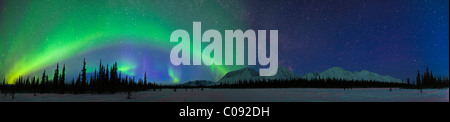 View of Northern Lights over the foothills of the Alaska Range in Broad Pass, Southcentral Alaska, Winter - Stock Photo