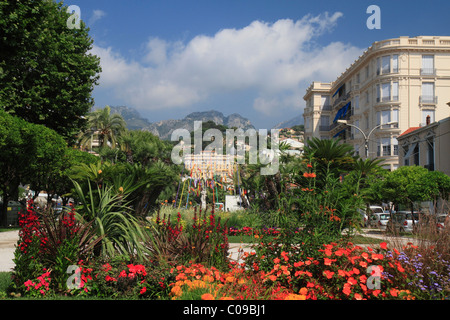 France alpes maritimes menton garden serre de la madone for Jardin bioves 2015