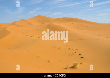 Tracks in the sand dunes, Erg Chebbi, Morocco, Africa - Stock Photo