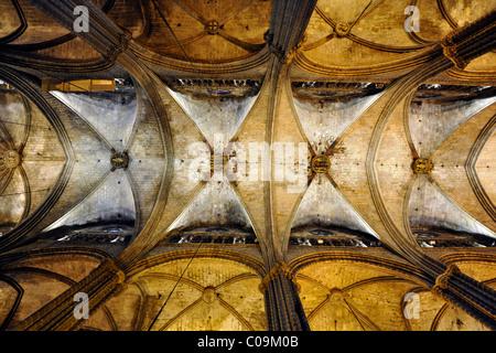 Interior, reticulated vaulting, nave ceiling, Gothic cathedral of La Catedral de la Santa Creu i Santa Eulalia, - Stock Photo