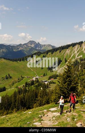 On the trail to Mt. Brecherspitze, Obere Firstalm, Untere Firstalm, Firstalmen mountain pastures below Mt. Bodenschneid - Stock Photo