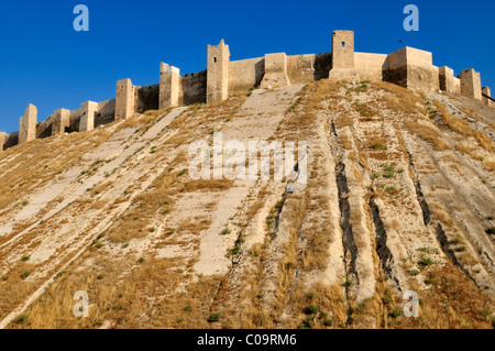 Historic citadel of Aleppo, Syria, Middle East, West Asia - Stock Photo