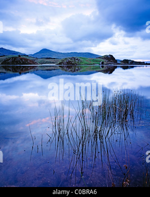Dawn over Llyn Y Dywarchen, Snowdonia National Park. Wales - Stock Photo