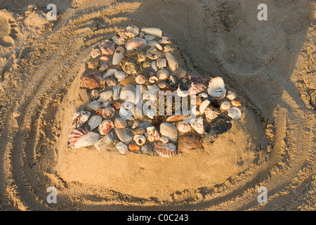 Loveheart made from sand on beach covered in shells - Stock Photo