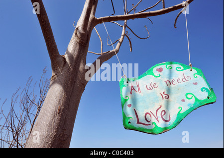 All we need is love sign hanging from a tree - Stock Photo