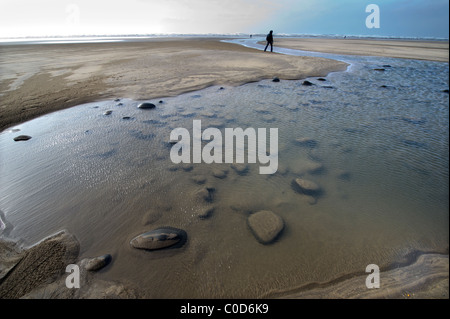 a walker enjoys Northam Burrows on the North devon coast - Stock Photo