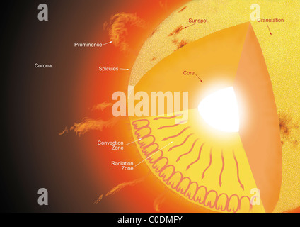 A cutaway view of the sun, showing its different parts and the currents that flow within it. - Stock Photo