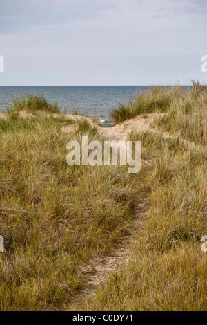 Marram grass and sand dunes on the Norfolk Coastal Path - Stock Photo