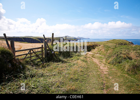 A stretch of the Pembrokeshire coastal path between St Davids and Solva, West Wales. - Stock Photo