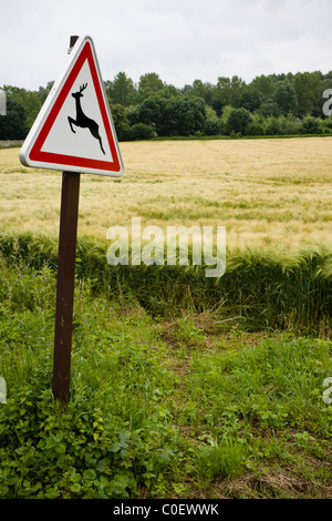 A warning sign, depicting deer, by a road in La Ramée, France. - Stock Photo