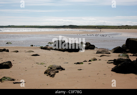 Cruden Bay on the North East coast of Scotland - Stock Photo