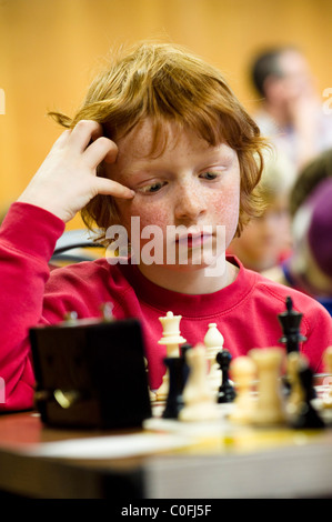 School boy aged 7 playing in a chess tournament in Wales UK Europe - Stock Photo