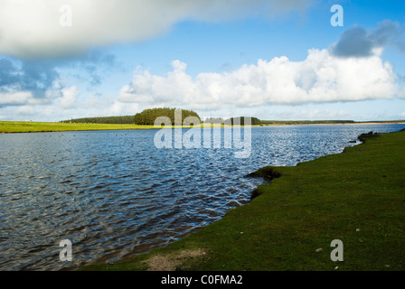Crowdy Reservoir is on Bodmin Moor Cornwall England