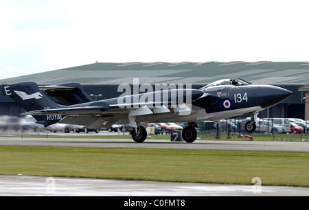Sea Vixen, the de Havilland DH.110 Sea Vixen taking off. - Stock Photo